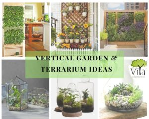 Terrarium& vertical garden ideas